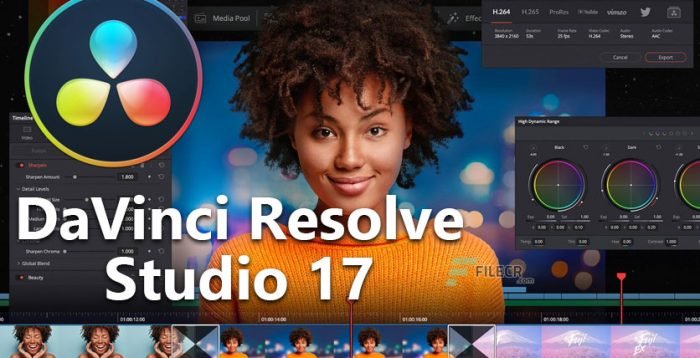 Jasa Instal Software DaVinci Resolve Mac Win Permanen AntiBlacklist